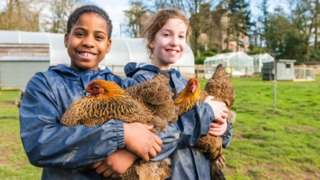 Children holding hens