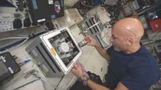 The Italian astronaut Luca Parmitano runs the BioRock experiment on the ISS