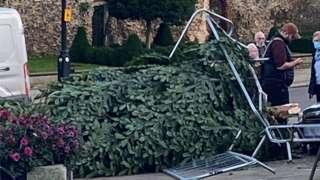 The knocked over Christmas tree