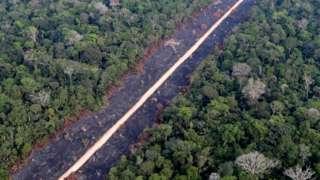 Road through burnt Amazon jungle near Porto Velho, Rondonia State, Brazil
