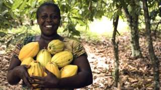 Woman holding cocoa pods