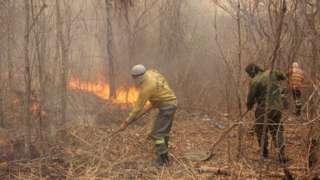 Brigadista tenta controlar fogo no Pantanal