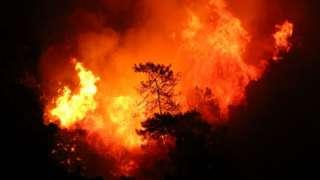 Охваченный пожаром лес, неподалеку от курортного города Мармарис