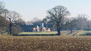 The Thorndon farm