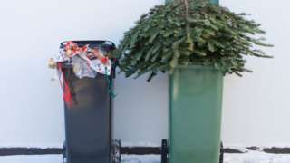 Wheelie bins with Christmas wrapping paper and a dead tree
