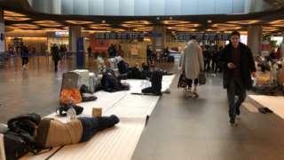 Мигранты во Внуково