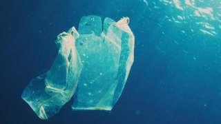 Plastic bag floating in the ocean