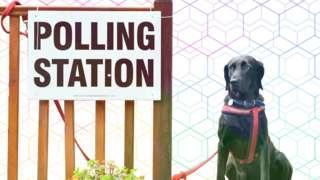 UK Elections 2021