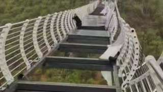 अग्लो पुल