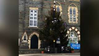 The tree is due to be removed this weekend