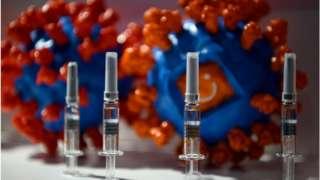 """图为在中国国际服务贸易交易会上展示的北京科兴中维生物技术公司Sinovac的""""克尔来福""""灭活疫苗。"""