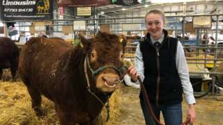 A young woman standing next to a cow at the Balmoral Show, inside a large hanger-like indoor area