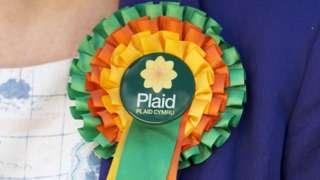 Plaid Cymru rosette