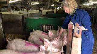 Pig and poultry farmer Sophie Hope says she has periods of feeling low, worrying about her business