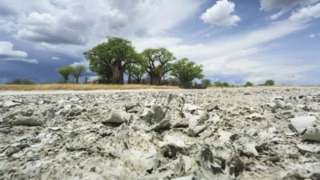 Zona desértica en Botsuana