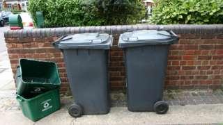 Black wheelie bins