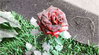 A rose covered in ash from Guatemala's most violent volcano eruption in more than a century