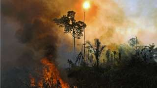 A fire in the Amazon