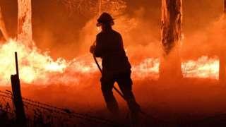 Một lính cứu hỏa ở gần thị trấn Nowra thuộc tiểu bang NSW đang nỗ lực bảo vệ những ngôi nhà gần đó khỏi đám cháy.
