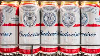 Cans of Budweiser