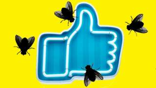 Illustration of flies hovering over a Facebook 'like' icon.