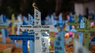 A bird perches on the cross that accompanies the grave of a person who died in January, in the Nossa Senhora Aparecida Cemetery, where victims of covid-19 are buried, in Manaus, Amazonas, Brazil, 01 March 2021 (