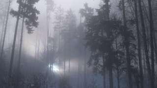 Lights in Rendlesham Forest