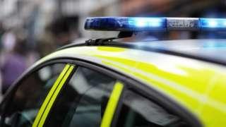 Cannabis worth £10m found in rabbit hay lorry