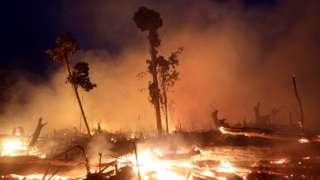 آتش سوزی در جنگل های آمازون برزیل