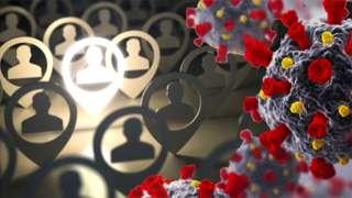 koronavirüs grafiği