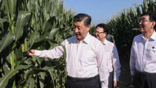习近平7月曾到中国粮食主产区之一的吉林松辽平原