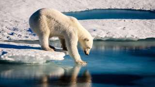Scientists say we have to act now to save the world from climate change.