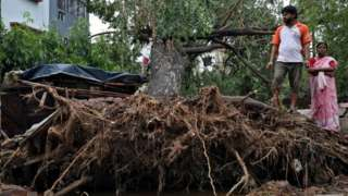 People look at an uprooted treee in Kolkata, India. Photo: 21 May 2020