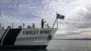 El buque Farley Mowat en el golfo de California