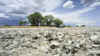 Lake Makgadikgadi dry well well now