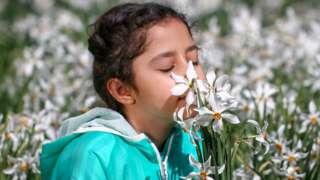 Niña oliendo flores