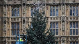 Large Christmas tree goes up outside Parliament