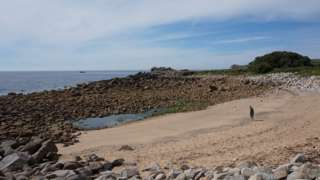 Porth Minick beach, Scilly