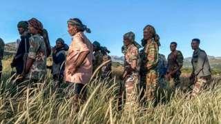 Ethiopia Tigray crisis: Ethiopia and Tigray region 'war' tori