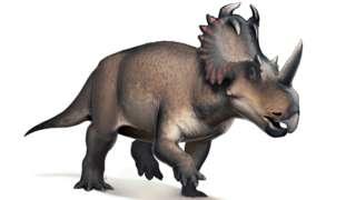 เซนโทรซอรัสเป็นไดโรเสาร์กินพืชชนิดหนึ่ง มีชีวิตอยู่เมื่อราว 77 ล้านปีก่อนในแคนาดา