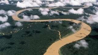 Imagem aérea do Rio Japurá