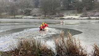 Firefighters help dog out of frozen pond at Hardwick Hall Park