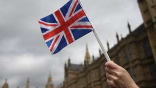 Brexit supporter waves flag at Westminster