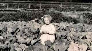 Devojčica na parceli