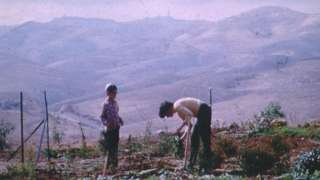 Kibuc Izrael ilustracija foto BBC