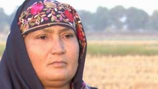 گوجرانوالہ، سموگ، پنجاب، چاول، خواتین