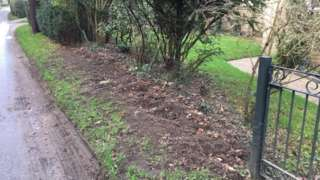 The gap in Mr Wells's front garden where the new hedge was going to be