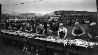 Herring being gutted in Lowestoft in the 1920s