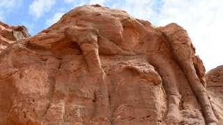 A huge camel relief in northern Saudi Arabia