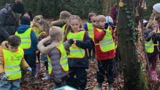 children learning in woods